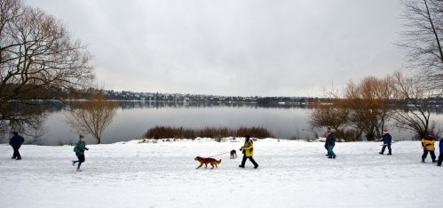 """Now: Using Google Earth and visits to an east shore still covered with the """"Big Snow of 2008,"""" Jean Sherrard took his repeat photo from near where Kirkwood Place North meets Green Lake Way North."""