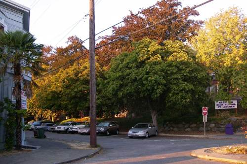 Same corner of Interlake Avenue and 43rd Street, only eleven days later.  The trees are turning and the temporary Garfield High School sign is in place on the right.