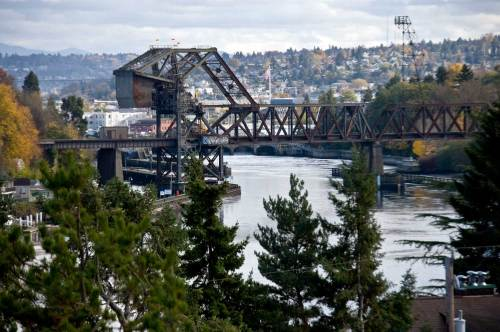 The rail bridge through trees
