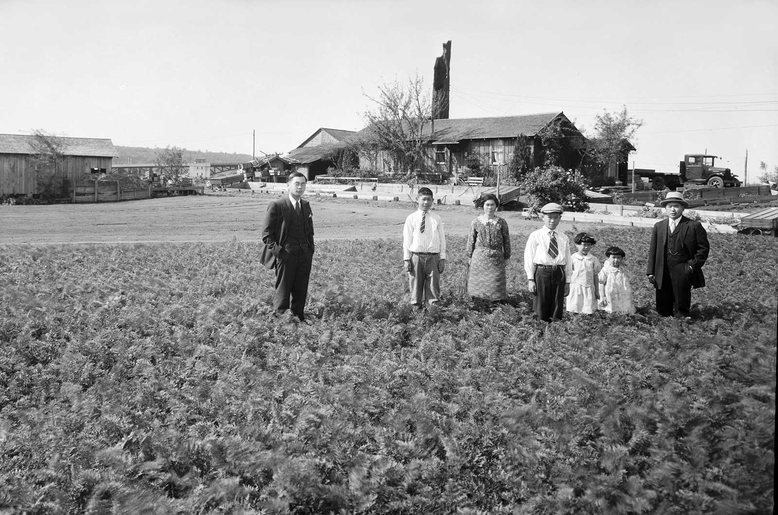 Seattle Now & Then: The Ishii Family Farm ...  Seattle Now & T...