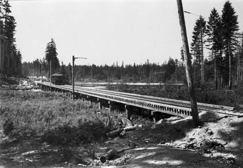 A Seattle Everett Interurban trestle at the north end of Echo Lake