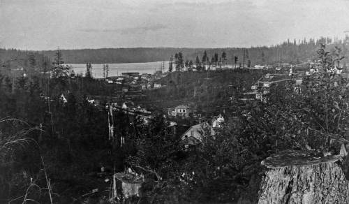 An early look to Lake Union and the milltown at its southern end, taken from Denny Hill.  The view below approximates the historical photographer's prospect. I recorded it about 30 years ago for a Pacific feature then.
