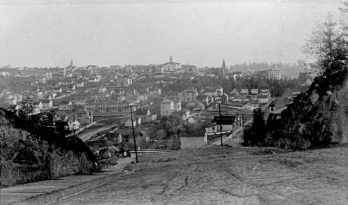 Looking south on 4th Ave. from between Stewart and Virginia Streets ca. 1886.