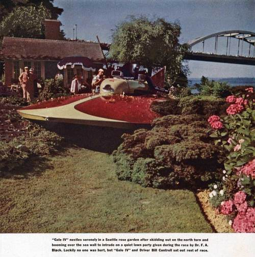 How times change.  One year earlier, in the 1954 Gold Cup, the Gale wound up in a rose garden.  (Courtesy again, Ron Edge)