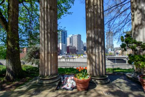 Camlyn through the columns