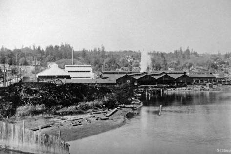 Pacific Coast Steel, about 1915 and after the large additions, left-of-center, were in place, reaching Andover Street on the far right.   Youngs Cove is still visited by the tides, and the photograph was taken over the Longfellow Creek outlet, and looking west to a West Seattle skyline that still mixes tall trees with new homes. (Courtesy, MOHAI)