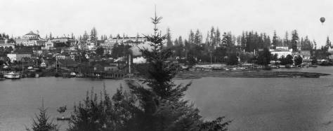 "An earlier view of ""town and gown"" - the University District and the University - from 1909 showing off part of the campus remade for the Alaska Yukon and Pacific Exposition.  Continuing our brief custom of showing distant looks at our featured home hidden in the trees, in this 1909 look we might have found it behind the first tree rising here from the center,"
