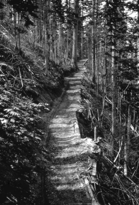 "The Snoqualmie pass ""highway"" in 1914/15."
