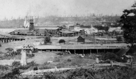 Built up some but also undated. Here the mill is most likely still extending on a dock south of Valley Street but attached to it - where MOHAI is now. The trestle in the foreground may be Westlake as it prepared to head south on a trestle along the western shore of the lake in 1890-1. To this side of the trestle, on the left beyond the stump, is native home made of cedar planks and mats and such. On the horizon the crown of Capitol Hill has been harvest first for its best timber.