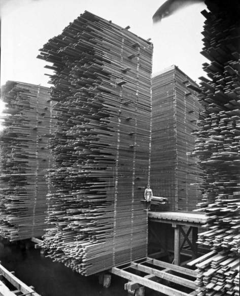 CLIP-Ballard-stacks-of-drying-lumber-SNT-cWEB