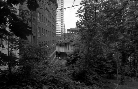 I (paul) recorded this about 20 years ago as a repeat of the photo above it. The freeway/conention center was is near the center, and a part of the path down to Ninth Ave. is revealed as a railing, lower-right.